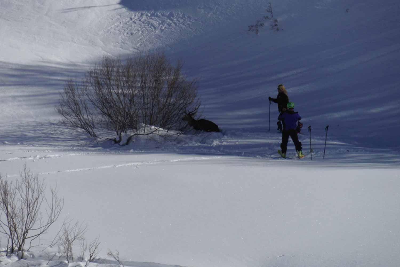 Raquetas de nieve en Asturias con Cangas Aventura